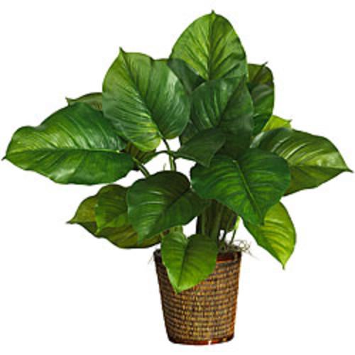 5' Dieffenbachia Silk Plant (Real Touch)