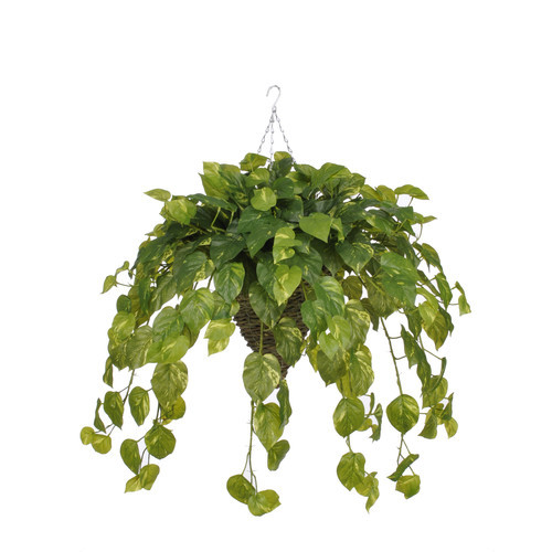 Artificial Real Touch Pothos Hanging Plant in Cone Basket