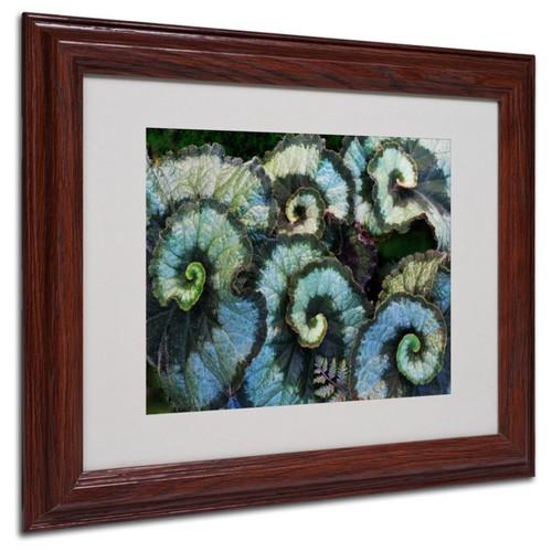 Trademark Fine Art 'Escargot Begonia' 11