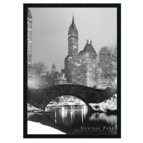 'Central Park' Framed Art