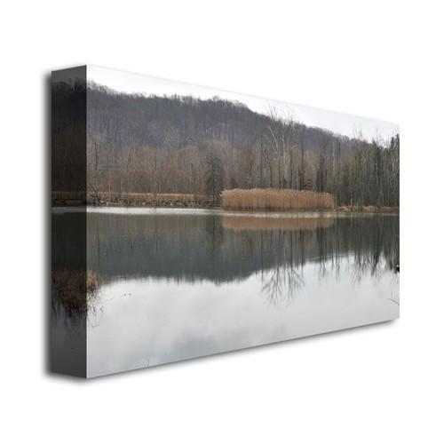 Trademark Global Kurt Shaffer 'Quiet Winter Day' Canvas Art [Overall Dimensions : 14x24]