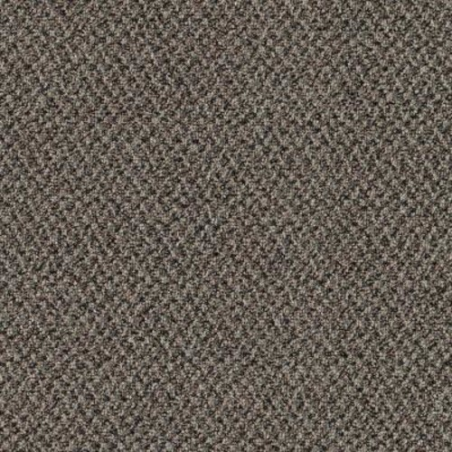 TrafficMASTER Difference Maker - Color Black Pearl 12 ft. Carpet