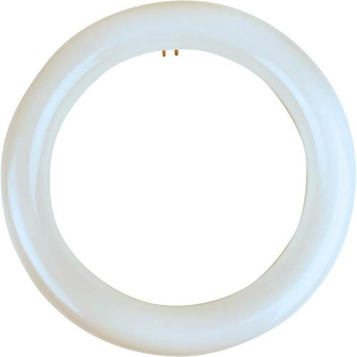 Meridian 22-Watt Equivalent Cool White T9 Circline Non-Dimmable LED Light Bulb