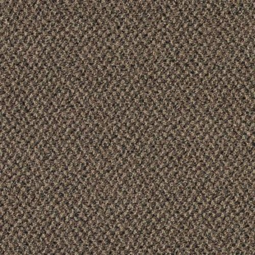 TrafficMASTER Difference Maker - Color Country Garden 12 ft. Carpet