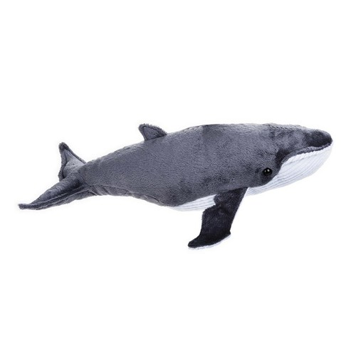 National Geographic Lelly Plush - Whale