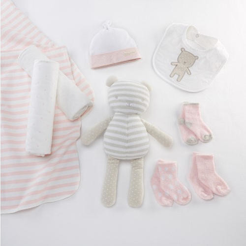 Baby Aspen Beary Special 10 Piece Pink Welcome Set