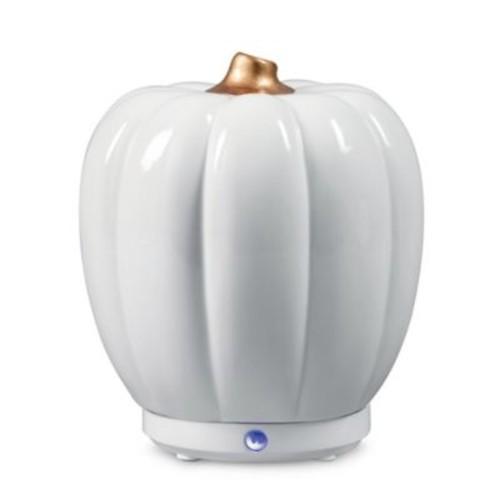 SpaRoom Pumpkin USB Ultrasonic Essential Oil Diffuser in White
