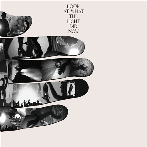 Look at What the Light Did Now [CD & DVD]
