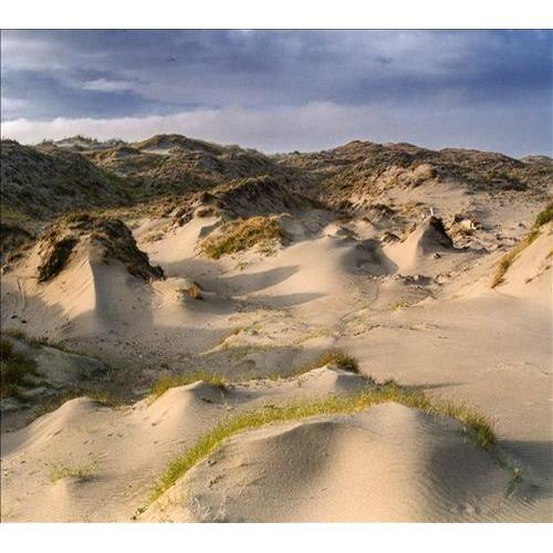 Dune Worship [CD]