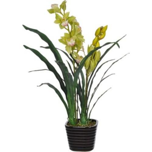 House of Silk Flowers Faux Green Cymbidium Orchid Flower in Vase