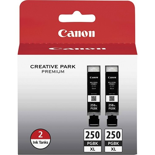Canon - 250 XL 2-Pack High-Yield Ink Cartridges - Black