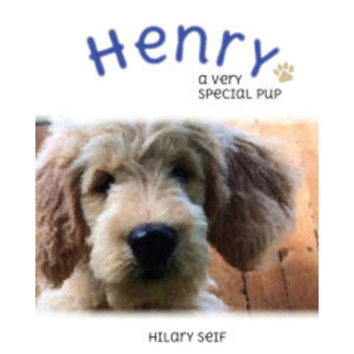 Henry: A Special Pup