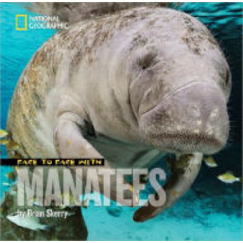 Face to Face with Manatees