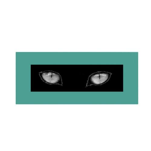 Trademark Fine Art 'Cat Eyes' 12