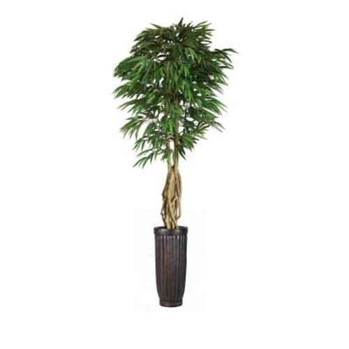 Laura Ashley 99 in. Tall Willow Ficus with Multiple Trunks in Planter