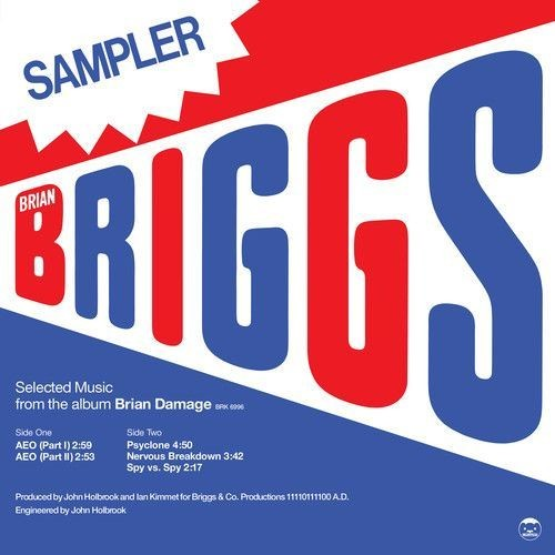Selected Music From the Album Brian Damage [12 inch Vinyl Single]