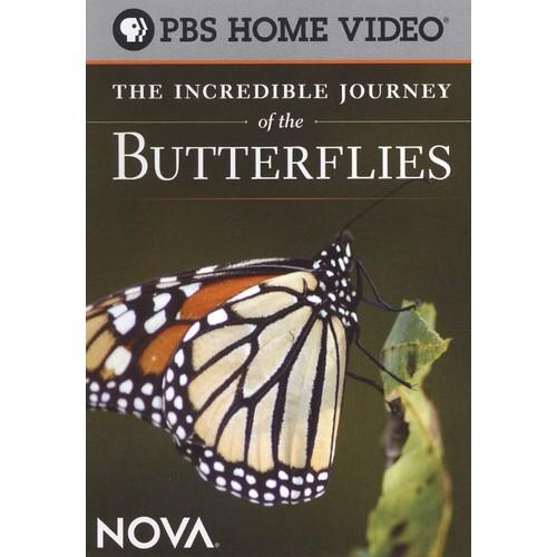 NOVA: The Incredible Journey of the Butterflies [DVD] [2008]