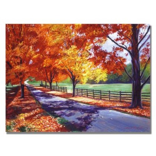 Trademark Fine Art 'October Road' 18