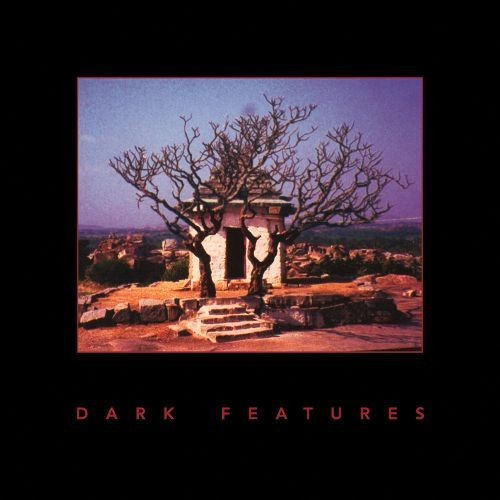 Dark Features [LP] - VINYL
