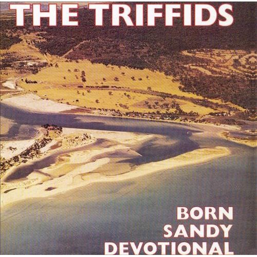 Born Sandy Devotional CD