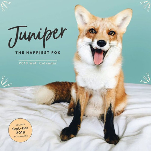2019 Wall Calendar: Juniper: The Happiest Fox