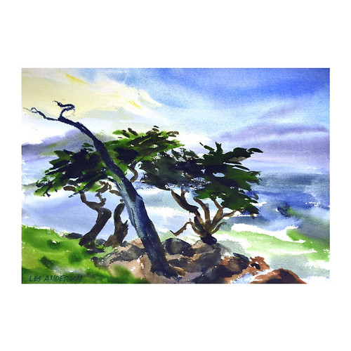 Coastal Cypress Trees by Les Anderson