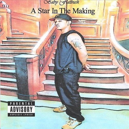 A Star in the Making [CD] [PA]