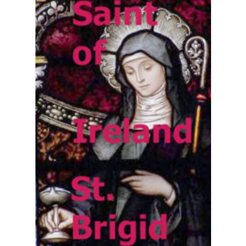 Saint of Ireland Saint Brigid