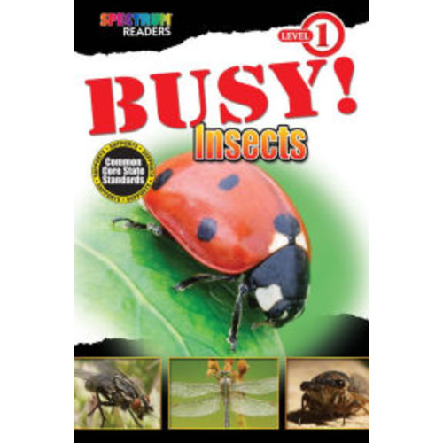 BUSY! Insects: Level 1