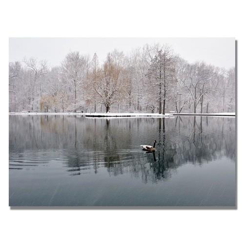 Trademark Global Kurt Shaffer 'Winter Goose' Canvas Art [Overall Dimensions : 18x24]