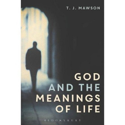 God and the Meanings of Life: What God Could and Couldn't Do to Make Our Lives More Meaningful (Hardcover)