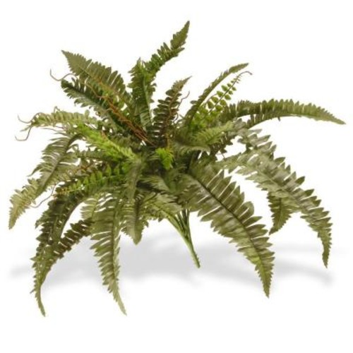 National Tree Company 26 in. Garden Accents Boston Fern Plant