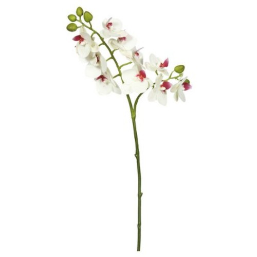 Artificial Real Touch Orchid-2 Branch - Vickerman