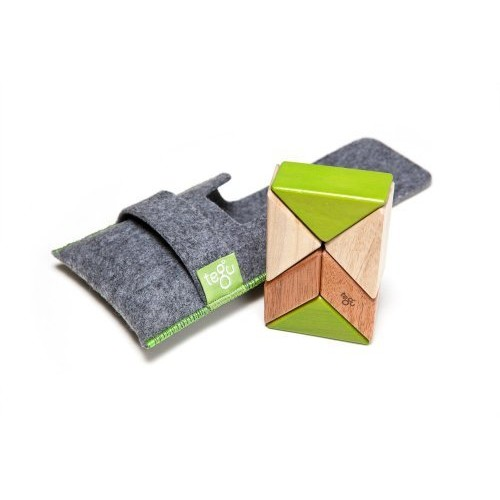 6 Piece Tegu Pocket Pouch Prism Magnetic Wooden Block Set, Jungle [Jungle, 6 Piece Sets]