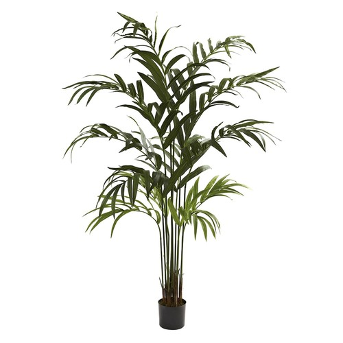 nearly natural 6-ft. Kentia Palm Tree