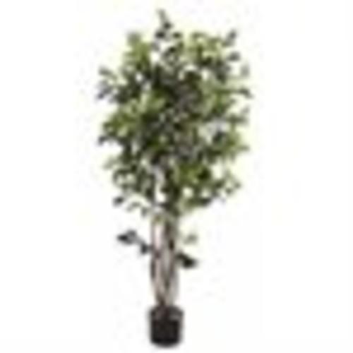 Ficus Bushy Silk Tree