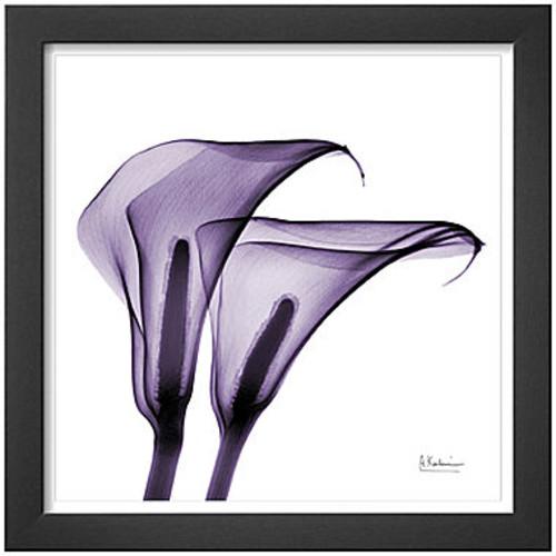 Art.com Violet Calla Twins II Framed Print Wall Art