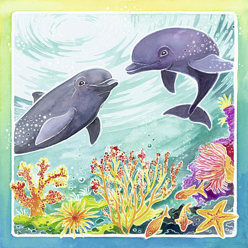 Ravensburger Aquarelle Dolphins Arts and Crafts Kit
