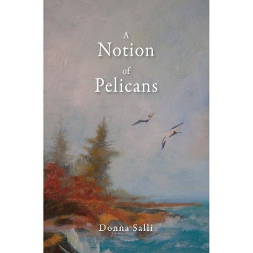 Notion of Pelicans (Paperback) (Donna Salli)