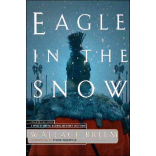 Eagle in the Snow