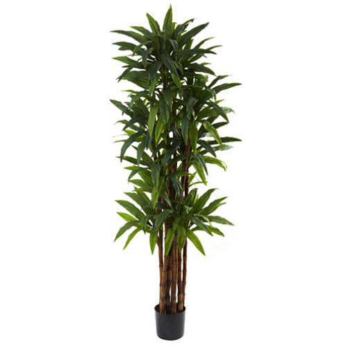 Nearly Natural 6.5-ft. Dracaena Tree