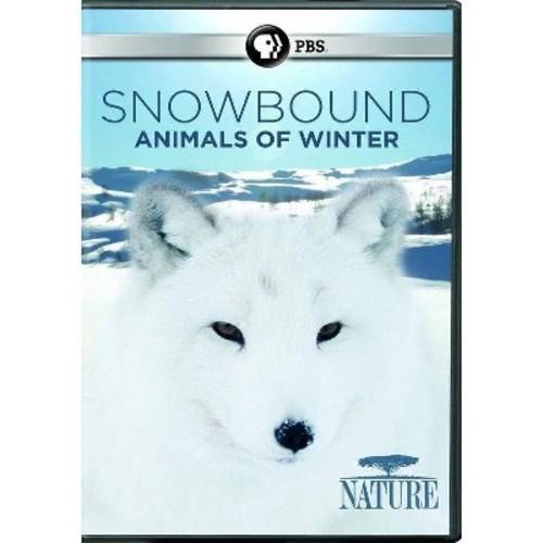 Nature:Snowbound Animals Of Winter (DVD)
