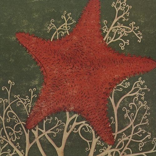 Arm of the Starfish [CD]