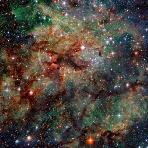 National Geographic 72 in. H x 72 in. W Nebula Wall Mural