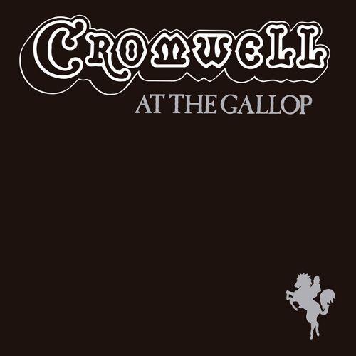 At the Gallop [LP] - VINYL