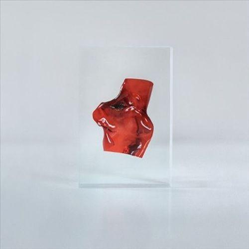 Parallelism [12 inch Vinyl Single]