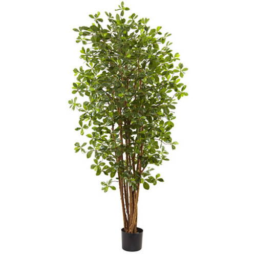 Nearly Natural 6 Black Olive Silk Tree