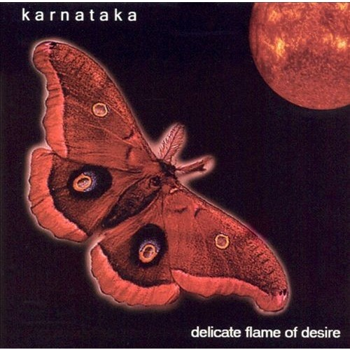 Delicate Flame of Desire [CD]