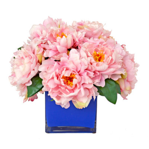 Peony in Navy Glass Vessel [Flower Color : White]