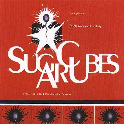 Stick Around for Joy [CD]